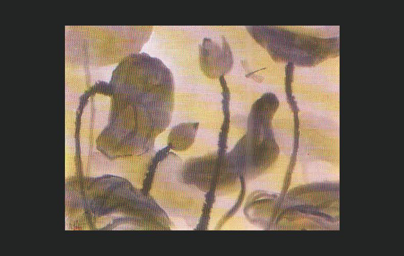 Chuồn chuồn